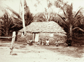 Queensland State Archives 2534 Darnley Island native grass house Torres Straits 1898.png