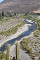 Río Choapa Coquimbo Chile 11.jpg