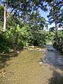Río Guatire. Guatire, estado Miranda, Venezuela.jpg