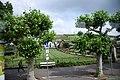 Rüdesheim 33DSC 0318 (46344538772).jpg