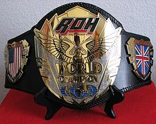 ROH World Championship belt  (2010 – Present)