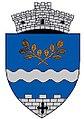 ROU AG Cetateni CoA.jpg