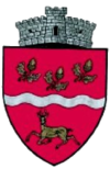 Coat of arms of Bogdănești