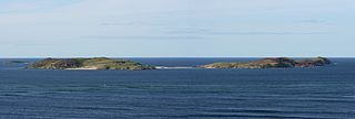 Rabbit Islands, Scotland