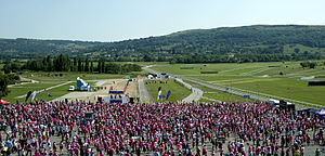 Race for Life - Race For Life 2011, on the grounds of the Cheltenham Race Course.