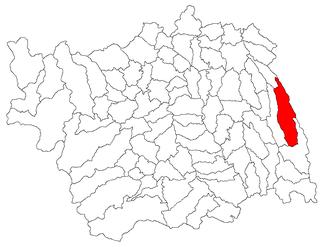 Răchitoasa Commune in Bacău, Romania