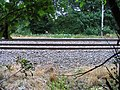 Railway track adjoining footpath - geograph.org.uk - 826953.jpg
