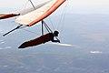 Rapido, silencioso e com urubu para acompanhar - Fast , quiet and with vultures flying along (8028597340).jpg