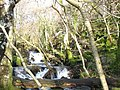 Rapids on Afon Fachwen - geograph.org.uk - 319814.jpg