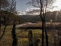 Reeds lake-29.jpg