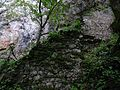 Reinegg Südteil Mauer 01.jpg