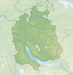 Reliefkarte Zürich blank