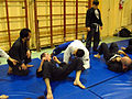 Renzo Gracie Seminar instruction.jpg