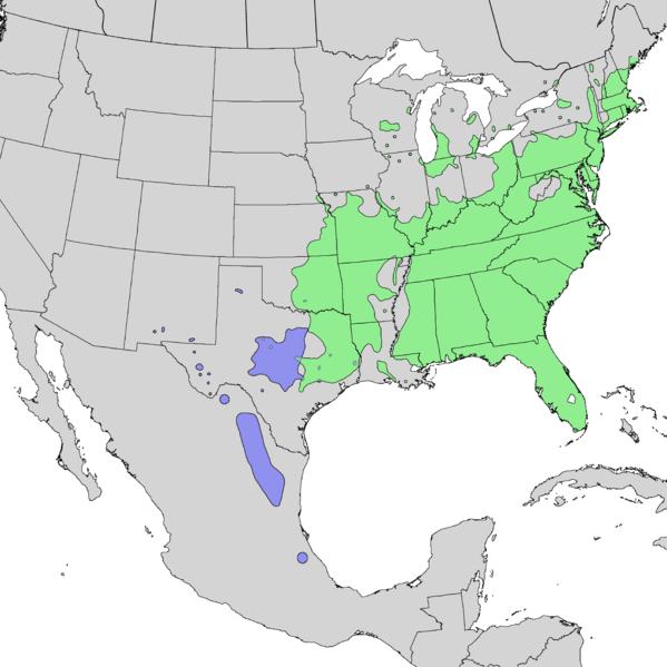 File:Rhus copallinum range map 2.png