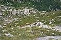 Rifugio G. Jervis Ceresole Reale 27.jpg