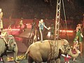 Ringling Brothers Circus (6105523698).jpg