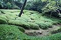 Ritsurin park02s3200.jpg