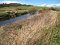 River Almond - geograph.org.uk - 644096.jpg