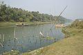 River Churni - Halalpur Krishnapur - Nadia 2016-01-17 8764.JPG