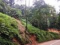 Roadside Landslip Anaimalali Hills IMG 20180822 164930854 BURST001.jpg