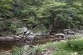 Rock Creek Park, NW, Washington, D.C LCCN2010641472.tif