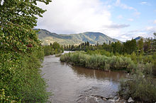 A wide brown river flows between dense shrubs and trees on both banks. Low hills or mountains are visible in the background.