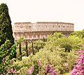 Roma - Colosseo - giugno 2007.JPG