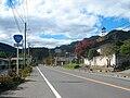 Route299-Ogano-Ida.jpg