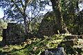 Ruinas Santa Maria Iglesia Interiores 03.jpg