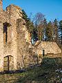 Ruine-Rauheneck-270216-2278390.jpg