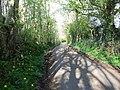 Rusky Park, Aghadowey, Co. Londonderry. - geograph.org.uk - 1259836.jpg