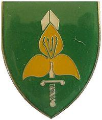 SADF 9 SA Division Flash.jpg
