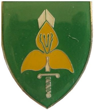 9th Division (South Africa) - 9th Division emblem