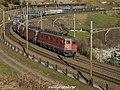 """SBB CFF FFS Re 620 11682 """"Pfäffikon SZ"""" + Re 420 ?? (31569851845).jpg"""