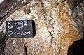 SE Mt Jackson garnetiferous aplite in megacrystic granite.jpg