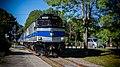 SNC 319 Southbound at Riverside Station (21723530589).jpg