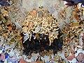 Sacro Monte di Crea. L'incoronazione di Maria.JPG