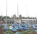 Sailing Clubs, Welsh Harp - geograph.org.uk - 62118.jpg