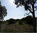 Salamis 403DSC 0526.jpg