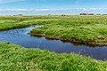 Saltholm - panoramio (37).jpg