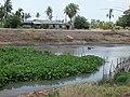 Sam Muang, Lat Bua Luang District, Phra Nakhon Si Ayutthaya 13230, Thailand - panoramio (3).jpg