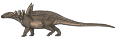 Sauropelta reconstruction.png