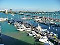 Sea Isle Marina Miami Florida left 20100213.jpg