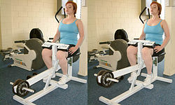 Seated calf raise machine.
