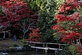 Seiryoji temple (8278695631).jpg