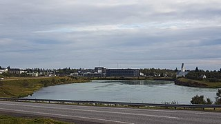 Selfoss (town) Town in South Constituency, Iceland