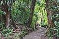 Selvatura Adventure Park 06.jpg