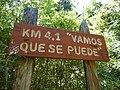 Sendero al Parque Nacional Hornopirén 17.jpg