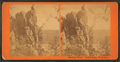 Sentinel Rock, Devil's Lake, Wisconsin, from Robert N. Dennis collection of stereoscopic views.png