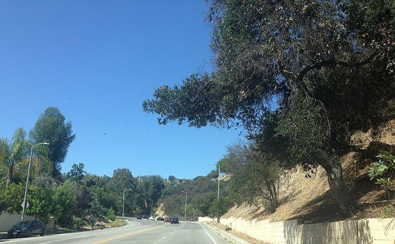 File:Sherman Oaks, Los Angeles, CA, USA - panoramio (220).jpg